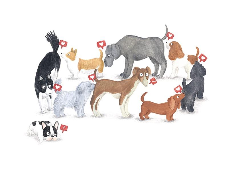 ilustracion de perros, dibujo de perros, ilustracion infantil de perros, razas de perros, Mar Villar, retratos de perros, ilustracion personalizada de perros, perros oliendo culos, Instagram perros, dog illustration, dog faces, dog prints, dogs illustration to buy, dog sniffing ass, tictail prints