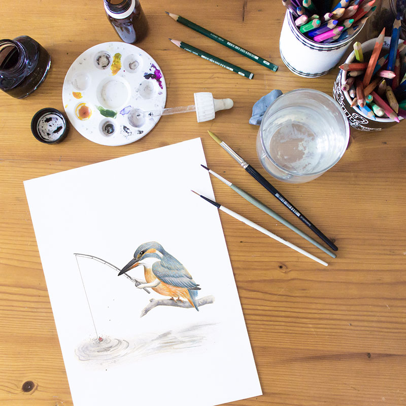 Inktober 2017, Mar Villar, martin pescador, kingfisher, alcedo atthis, ilustracion de aves, ilustracion de pajaro, ilustracion a tinta, bird illustration, kingfisher illustration