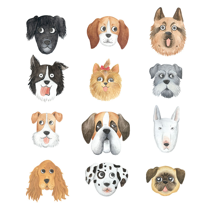 ilustracion de perros, dibujo de perros, ilustracion infantil de perros, razas de perros, Mar Villar, retratos de perros, ilustracion personalizada de perros,  dog illustration, dog faces, dog prints, dogs illustration to buy, dog sniffing ass, tictali prints,