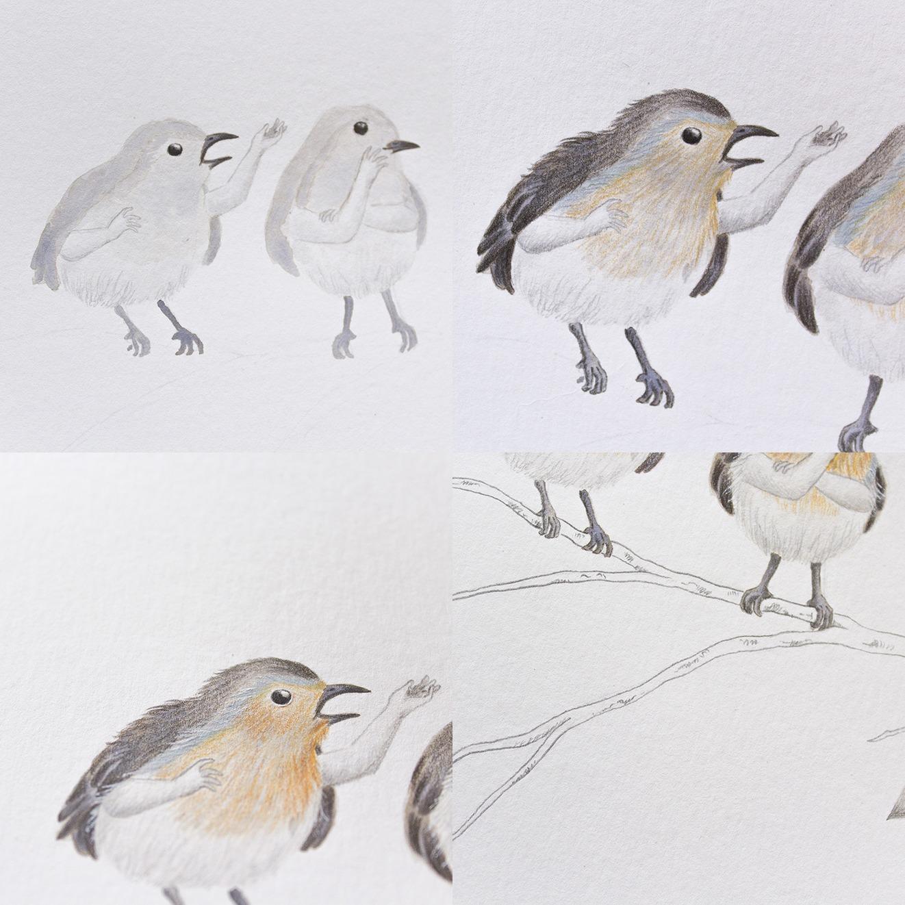 Ilustración a tinta, ilustración de pájaros, cuco, petirrojo, paso a paso de una ilustración, ilustración a tinta paso a paso, Inktober, Mar Villar, ilustración de pájaros, ilustración de aves, ilustración sobre ornitología, donujos de pájaros, dibujos de aves, ilustración científica,