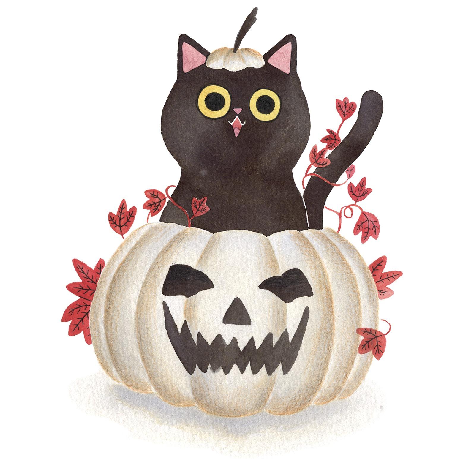 Ilustración de gato, Inktober, gato gordo, retrato de gato, gato halloween, calabaza de halloween,