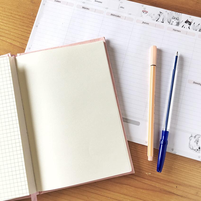 Propositos para el nuevo curso, curso escolar, establecer metas, planificación, planificar tareas,