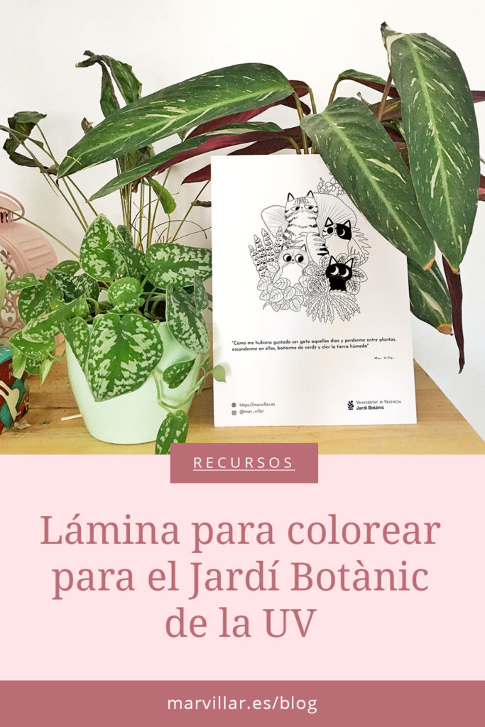lámina para colorear, Jardí Botànic Universitat València, jardín botánico, coloreable, ilustración para colorear, ilustración de gatos,